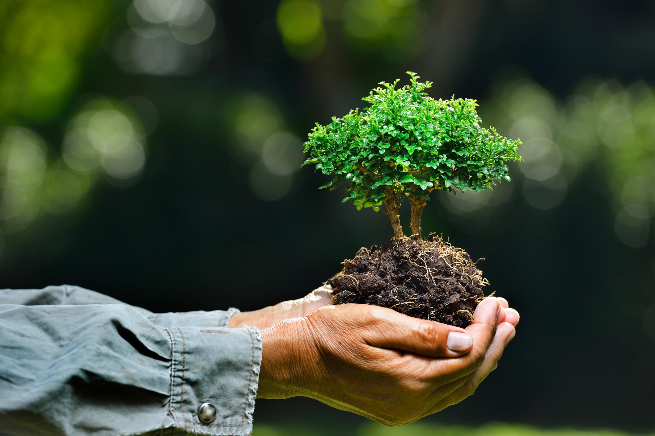 Nông dân thích ứng với biến đổi khí hậu: các yếu tố tâm lý có thực sự quan trọng?