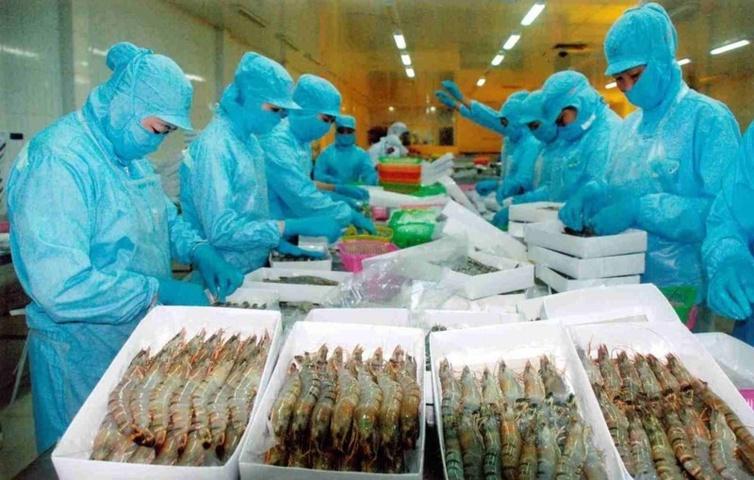 Chi phí môi trường của nước thải trong ngành chế biến thủy hải sản Việt Nam